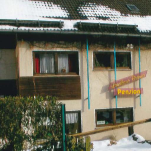 Landhaus Bräuer (Freudenberg)